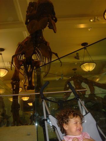 Dinosaurio(Small).jpg